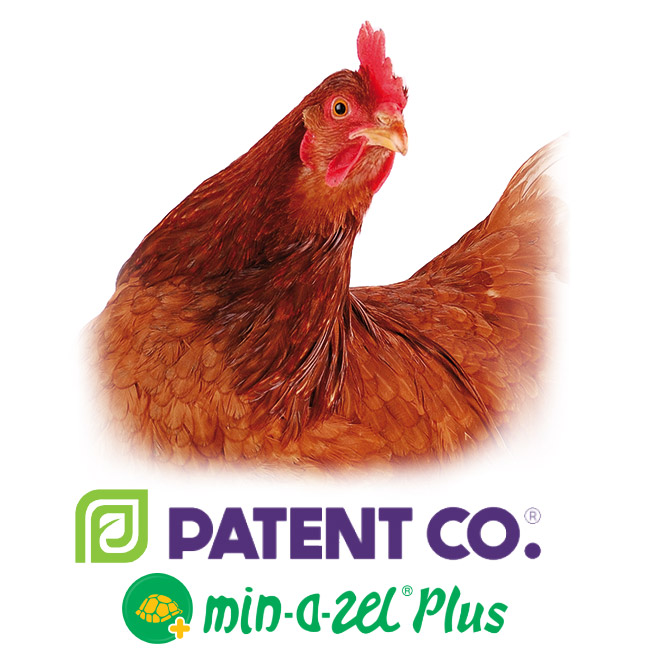 Органо-минеральный адсорбент микотоксинов для сельскохозяйственной птицы Миназель Плюс