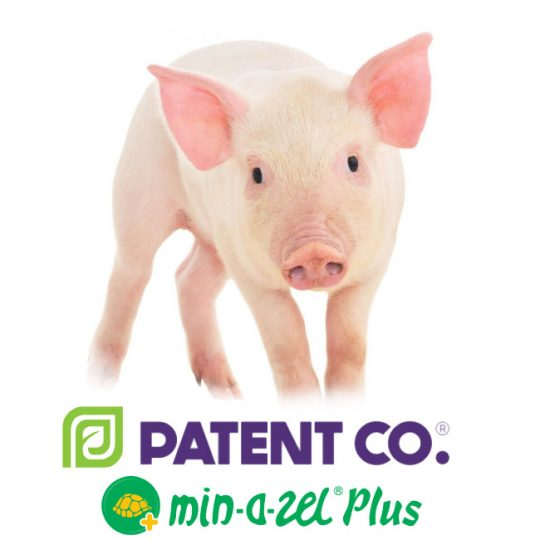 Органо-минеральный адсорбент микотоксинов для сельскохозяйственных животных Миназель Плюс